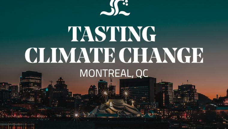 """Tasting Climate Change """"Toast to the Earth"""" VIP Consumer Dinner"""