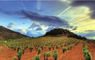 Get to Know Rioja
