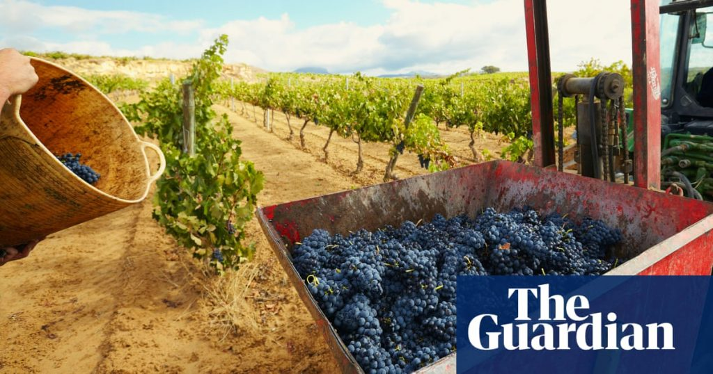 Rioja Featured in The Guardian